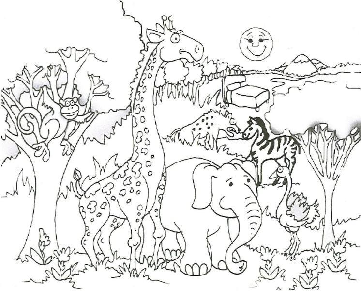 Orman Hayvanları Boyama Sayfası Nuhun Gemisi Anaokulu