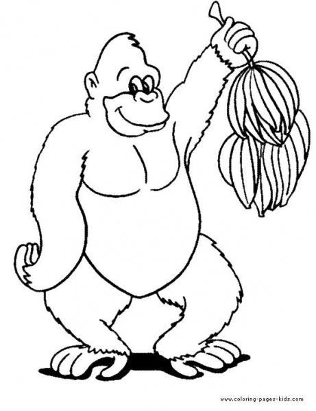 Goril Boyama Sayfaları Nuhun Gemisi Anaokulu